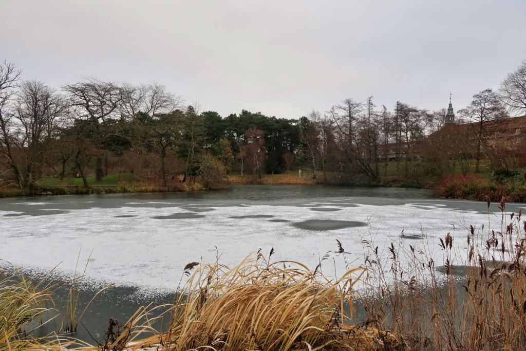 Jardin botanique Copenhague