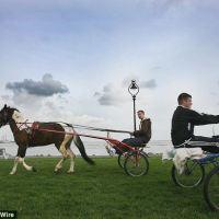 Halting site czyli trochę o irlandzkich nomadach - Travellers