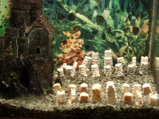 Chess setup inside an aquarium