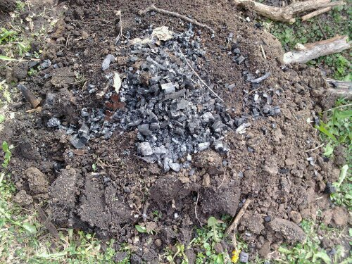 Charcoal made from dousing my campfire mixed into the dirt.