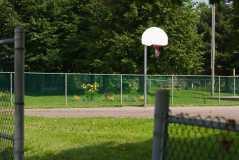 Basketball Net in South End Saint John Photograph
