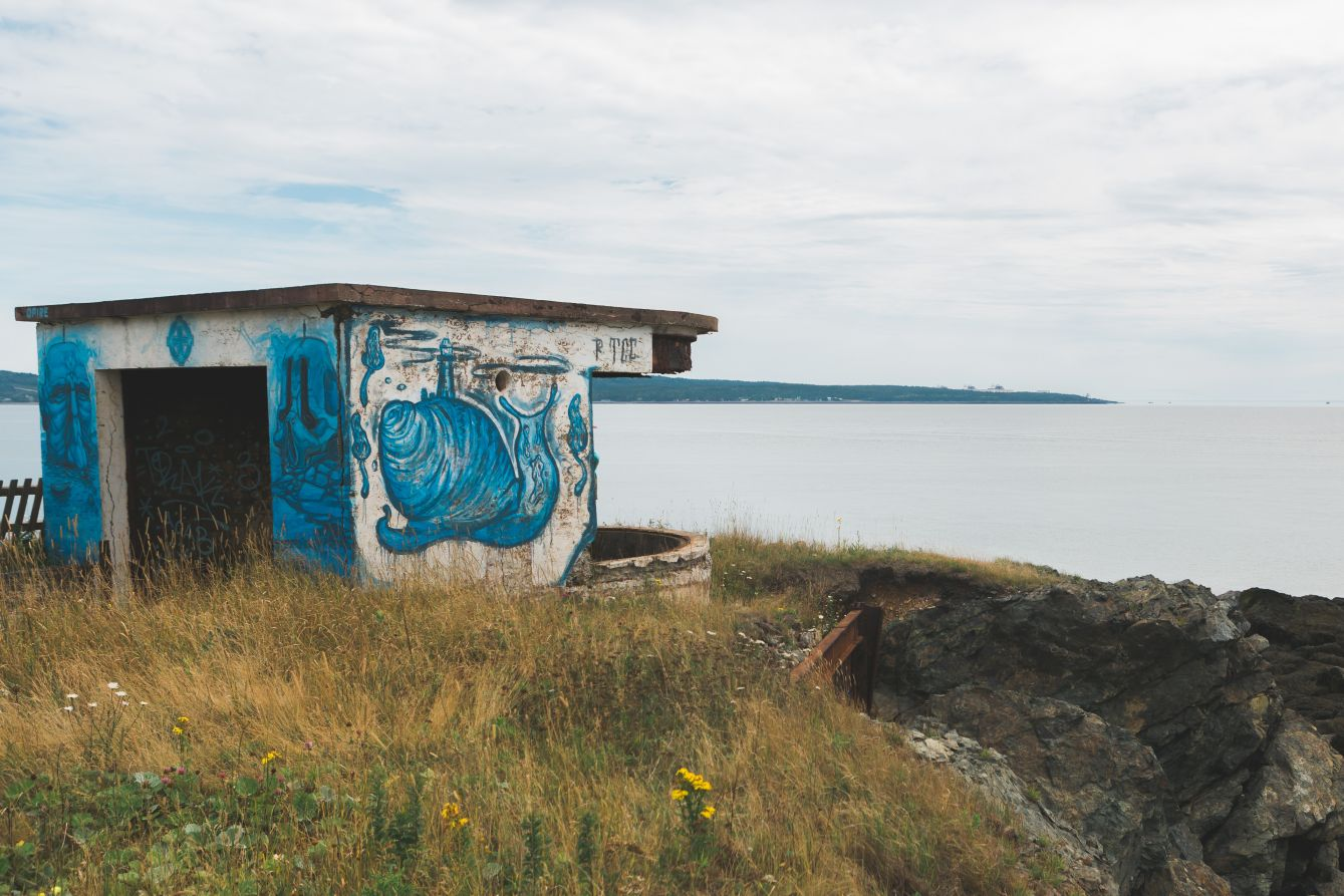 Click thumbnail to see details about photo - partridge island saint john 36317672844 o