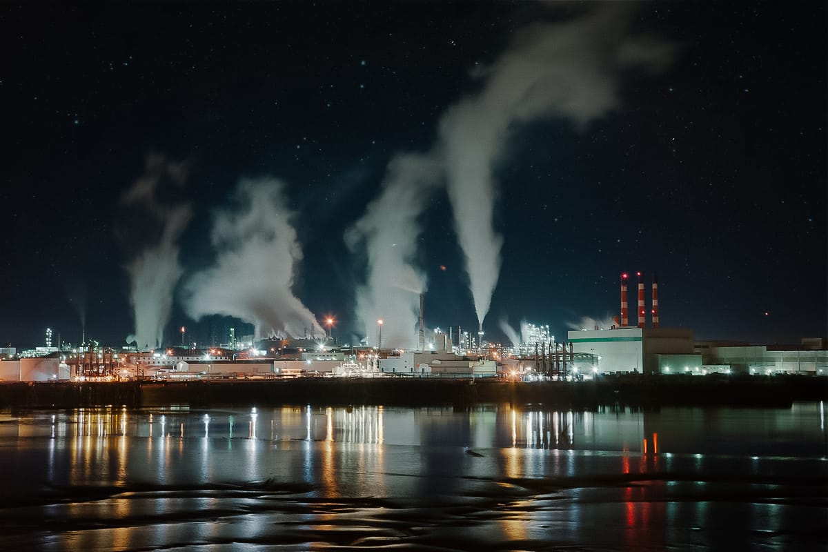 A photograph depicting Saint John Irving Paper Mill Night