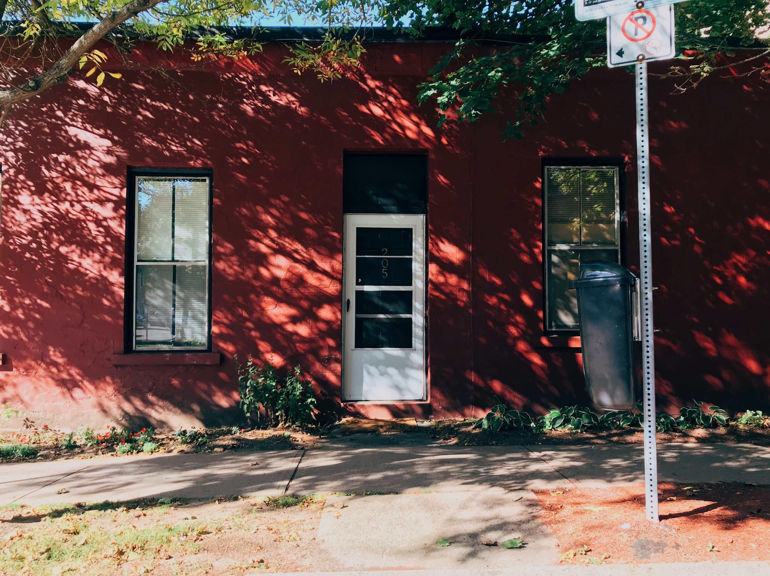 Tree Shadows on Germain Photograph