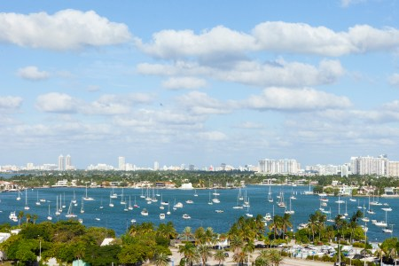 A photo of Florida Stock images 4