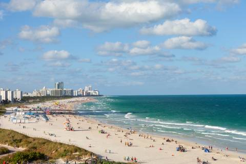 A photo of Florida Stock images 9