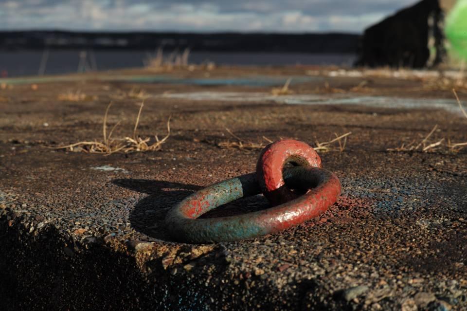 A photo of Steel Hook on Partridge Island