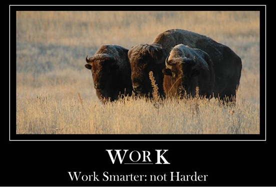 Work Smarter: Not Harder - image (c) U.S. Army Environmental Command