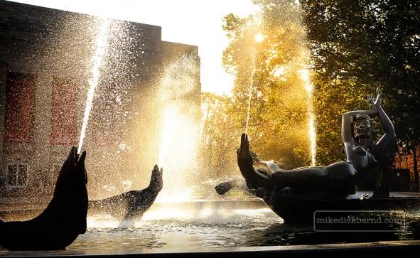 Showalter Fountain