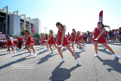 IU Redsteppers