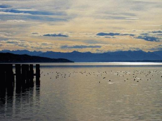 2011_01_10_Starnberg_Lake.jpg