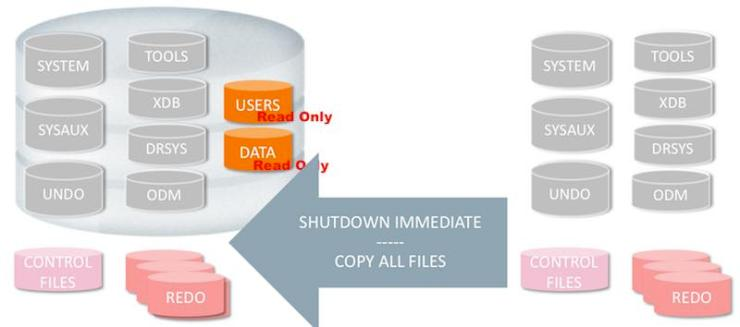 Fallback Strategy: Partial Offline Backup