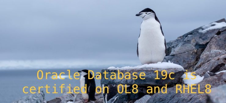 Oracle Database 19c is certified on OL8 and RHEL8