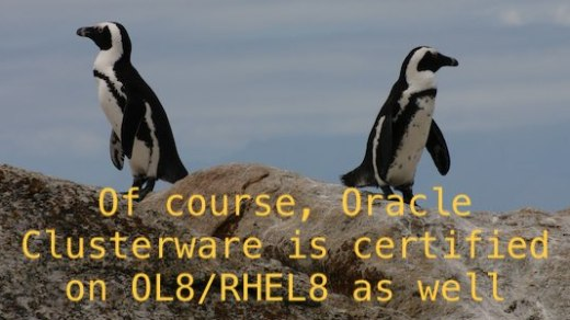 Of course, Oracle Clusterware is certified on OL8/RHEL8 as well