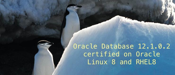 Oracle Database 12.1.0.2 certified on Oracle Linux 8 and RHEL8