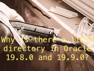 Why is there a lib32 directory in Oracle 19.8.0 and 19.9.0?