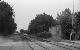 Train tracks always make for a good subject. Focusing to 15 feet allowed me to maximize my depth of field.