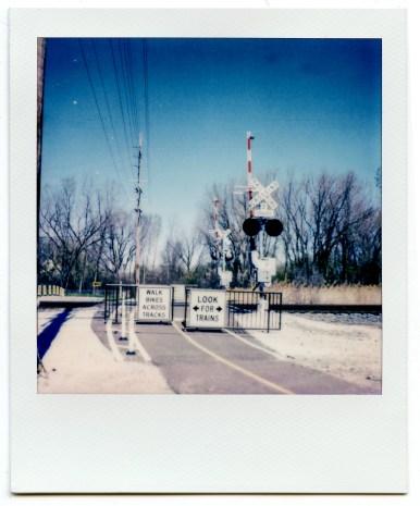 PolaroidSX70Color-4