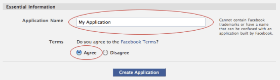 Application Name and Agree to the Facebook Terms