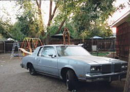 A dog barks at passersby while standing on an old car in a backyard on Lakeside Drive. Photo by Mike Higdon