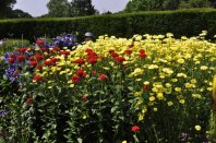 20140702 030 Wightwick Manor & Gardens