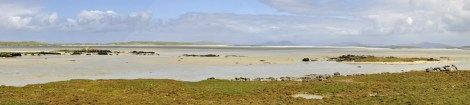 The machair at Mhalacleit, North Uist