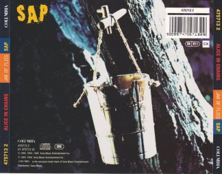 JAR OF SAP_0002
