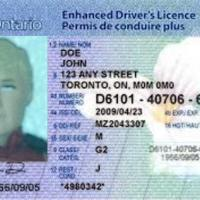 Part 254:  You Don't Need To See My Identification