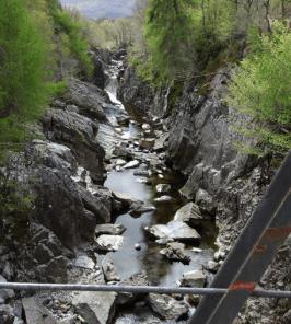 Gorge at Inverlair