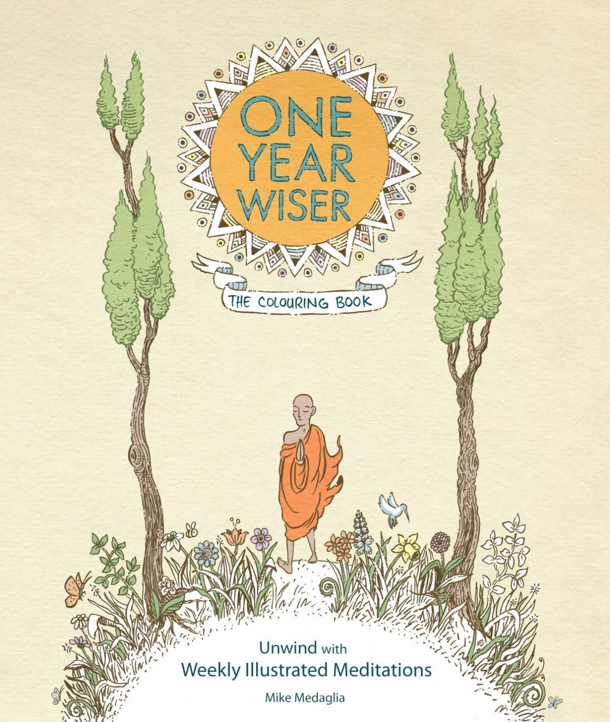 One Year Wiser TCB Cover