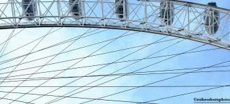Ferris lines