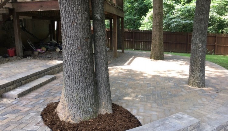 Patio Pavers around Trees with Mulch
