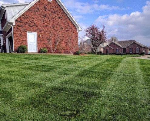 Freshly Cut Grass with criss cross stripes