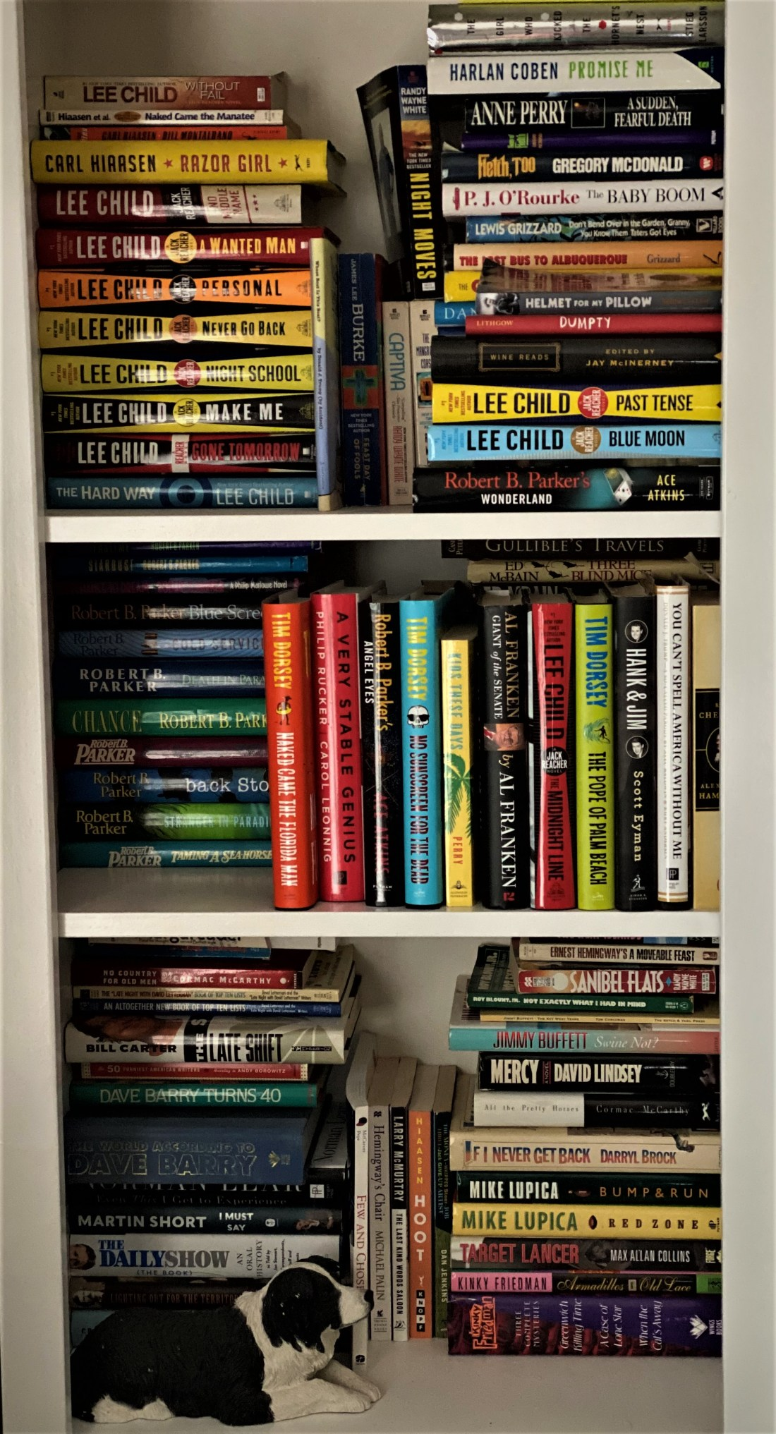 photos of mikes cluttered bookcase