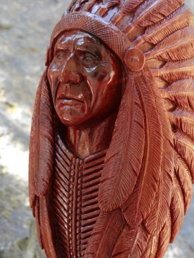 indianchiefD
