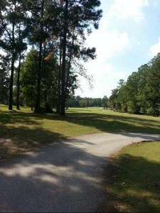 Golf beautiful day