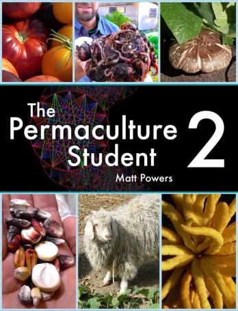 PermStudent2