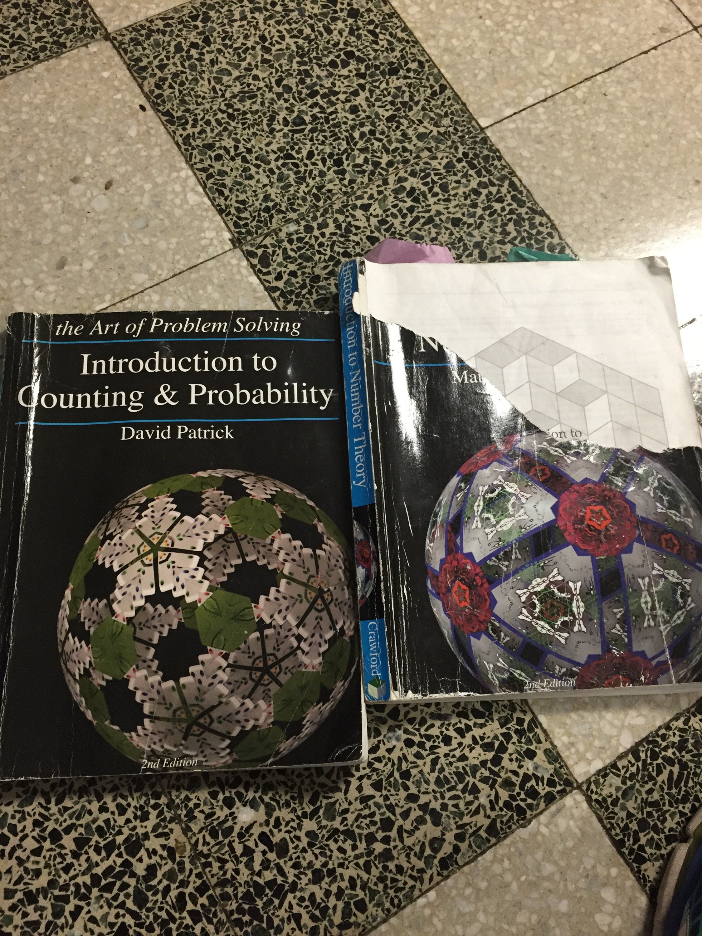 Two Books That I Secretly Used To Build Number Sense