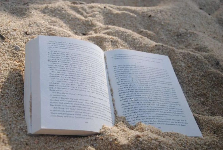 5 Recent Mysteries & Thrillers to take on Vacation