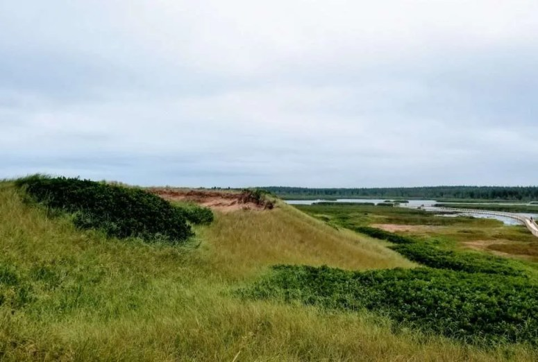 Things to do in PEI with kids