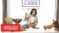 Nintendo Labo - Director Insights