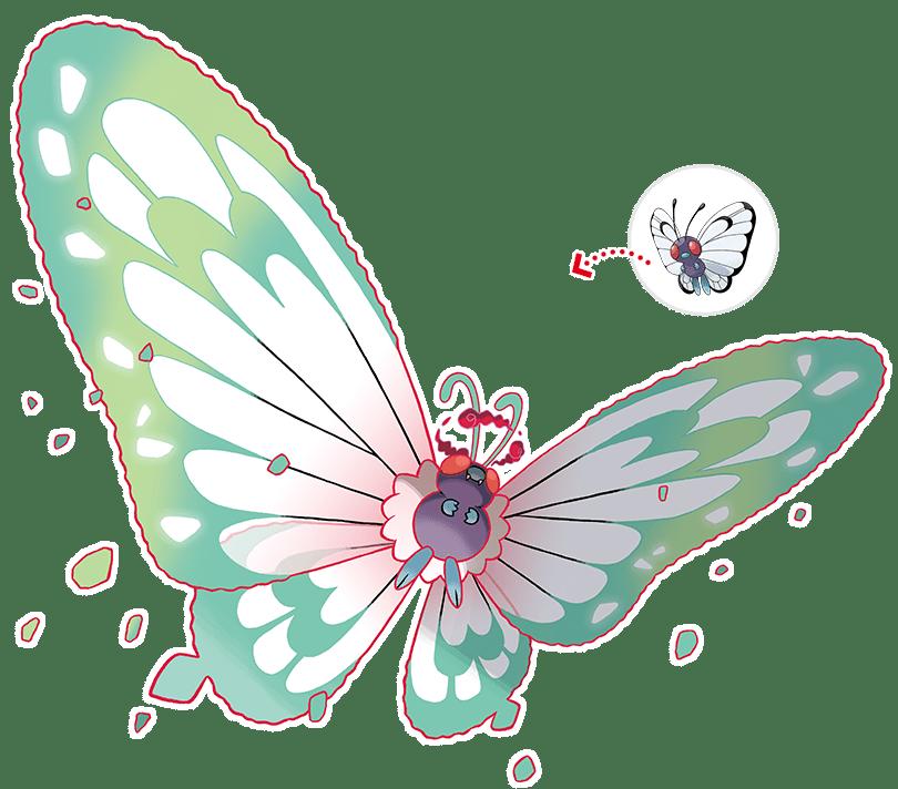 pokemon_gbutterfree_2x