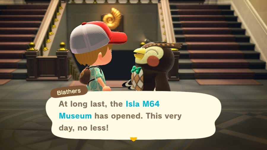 Animal Crossing Inside Museum