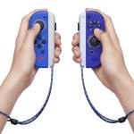 Zelda Joy-Con