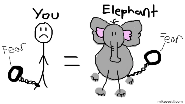 Overcoming fear of failure compared to an elephant