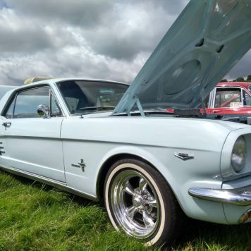 For my US friends, here's a Mustang. No sign of Sally.