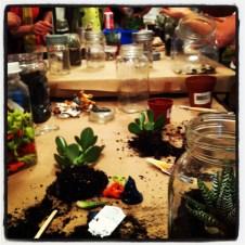 mason jar terrariums