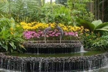 Jardim Botanico em Cingapura