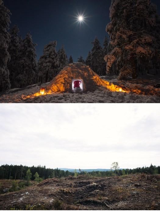 Det var en gang en skog
