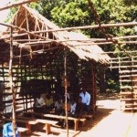 Mikoroshoni Primary school back in 1996